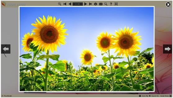 embed vs convert image to pdf